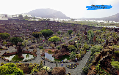 unusual things to do in lanzarote