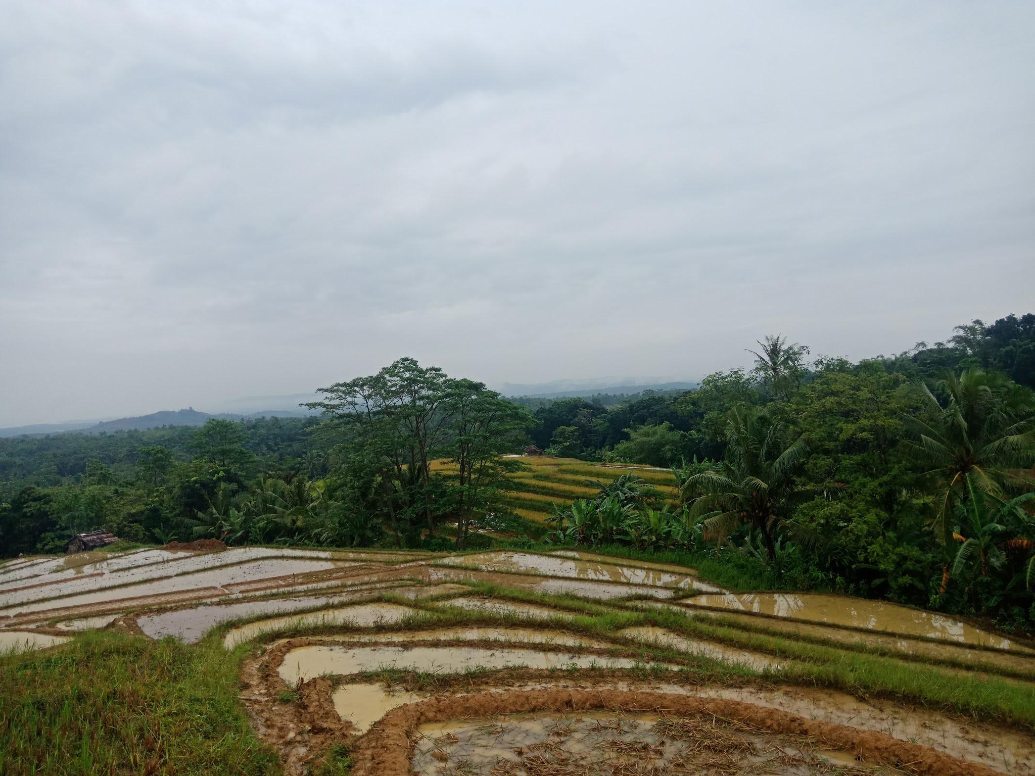 Kondisi Jalan Menuju Kampung Cangkilung Cimanggu, Pandeglang
