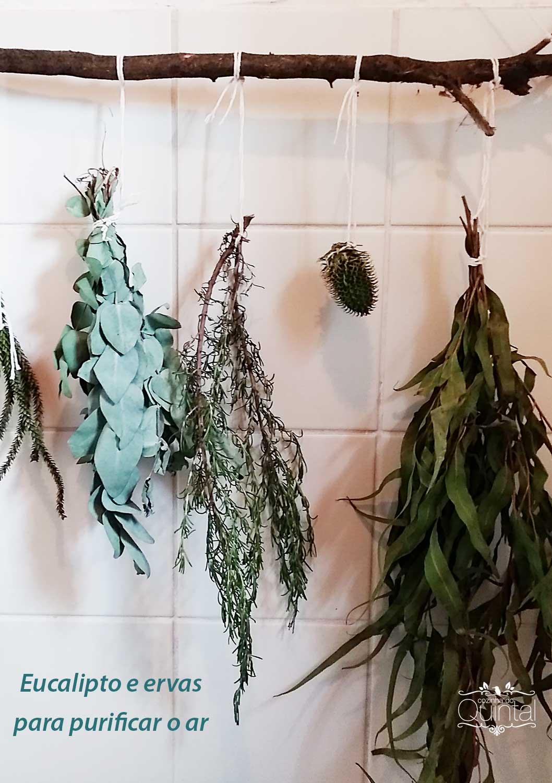 Purifique o ar da sua casa com eucalipto e ervas