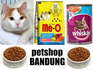 tempat penitipan hewan Bandung