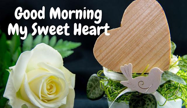Good Morning My Sweet Heart white rose Image
