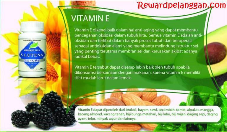 Kandungan Vitamin E dalam S Lutena