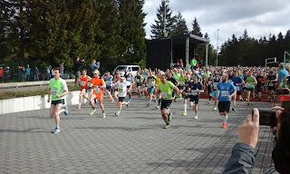 Start zum Rennsteiglauf-Marathon 2016