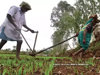 10.47-lakhs-crore-roundoff-agriculture-loan-in-2019