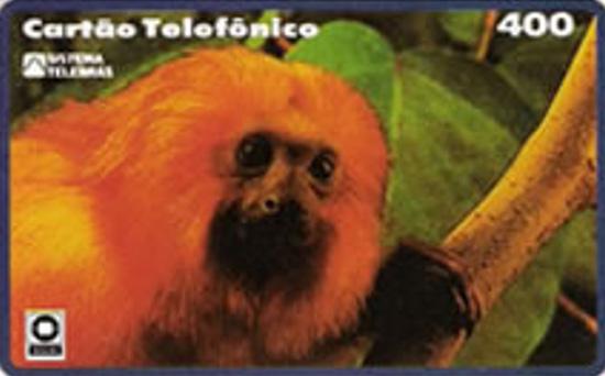 Cartão telefônico - Telerj - Mico leão Dourado