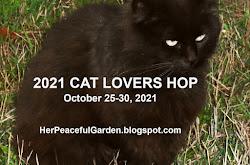IT's COMING !!!!!  =^..^=
