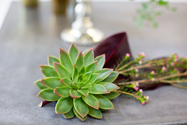 Succulent detail accent for a modern wedding by Mandy Majerik for Accent Decor