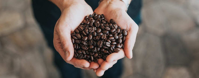 Decaf coffee beans | What Roasters Need to Know About Decaf Coffee