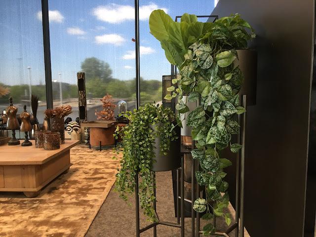 kunstplanten prijzen voor buiten kopen of huren groot goedkoop hangend of tegen muur met bloemen palmboom op terras of tegen wand in de winkel