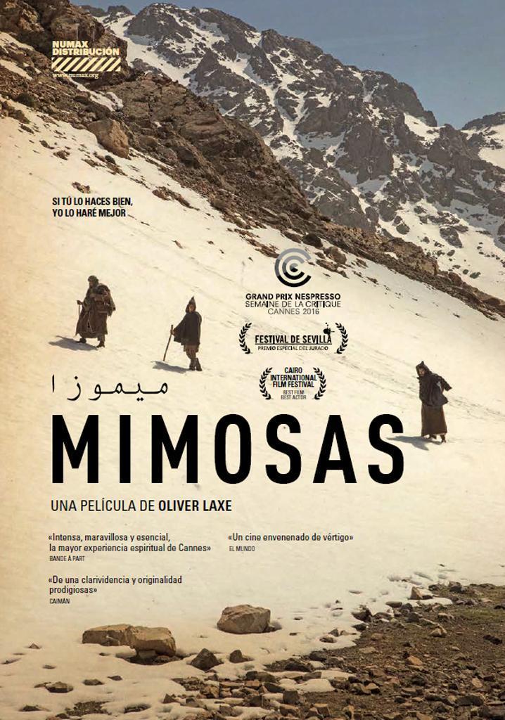 ver Mimosas 2017