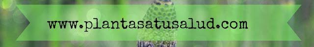 http://plantasatusalud.com/