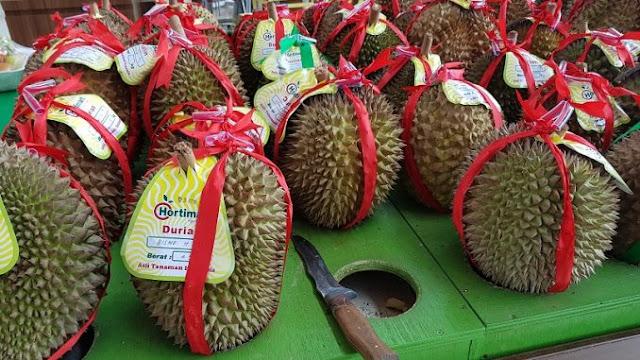 durian-hortimart