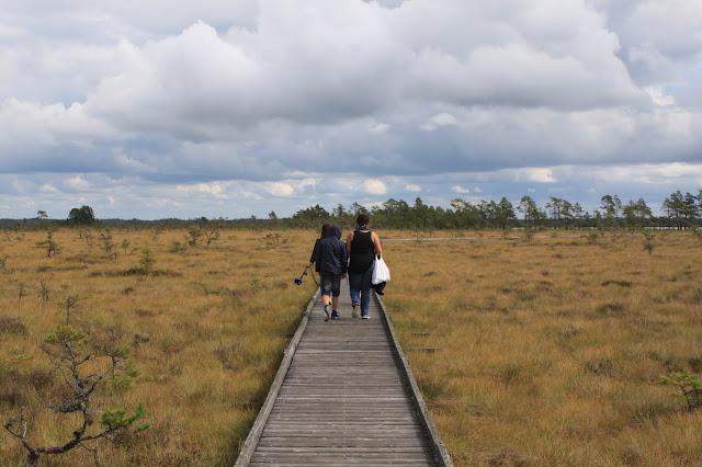 Nationalpark Store Mosse - Wandern mit Kindern