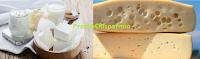 Logo Vinci gratis prodotti lattiero-caseari e soggiorni in Alto Adige