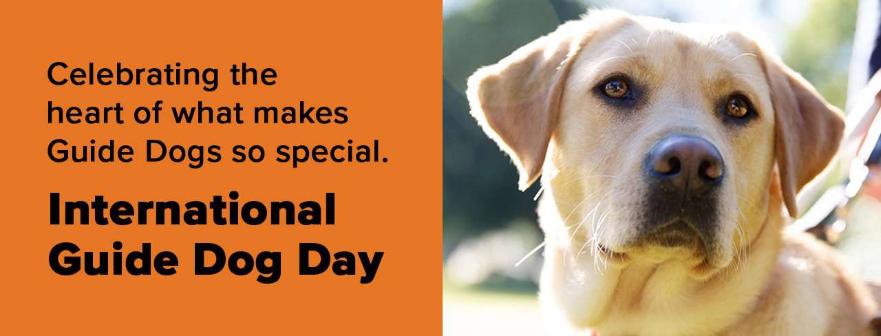 International Guide Dog Day Wishes Pics