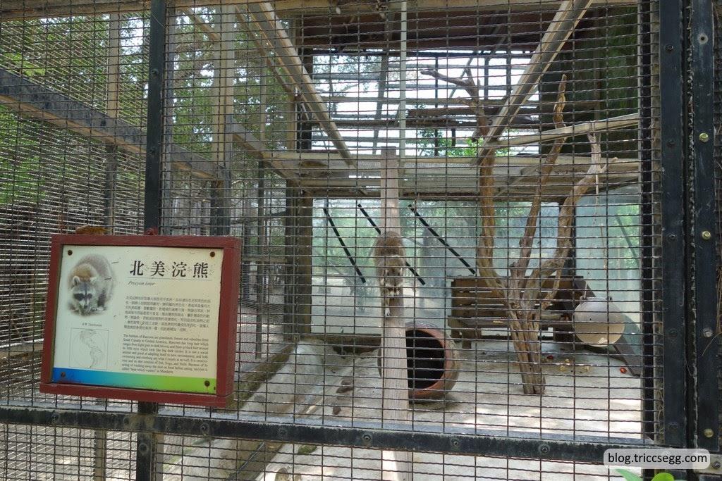新竹市立動物園(17).JPG