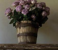 Lavender Roses in Vintage Wood Bucket via Chateau Domingue as seen on linenandlavender.net - http://www.linenandlavender.net/p/blog-page_9.html