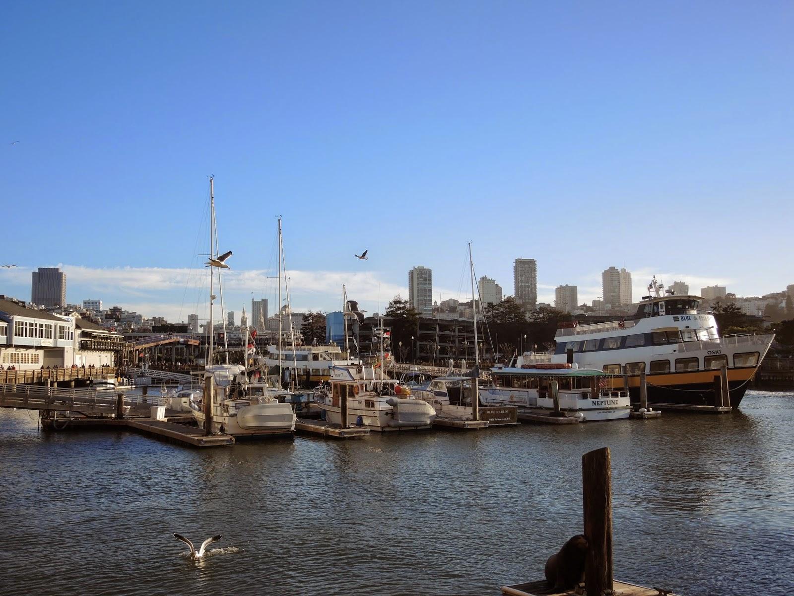 Pier 39一景