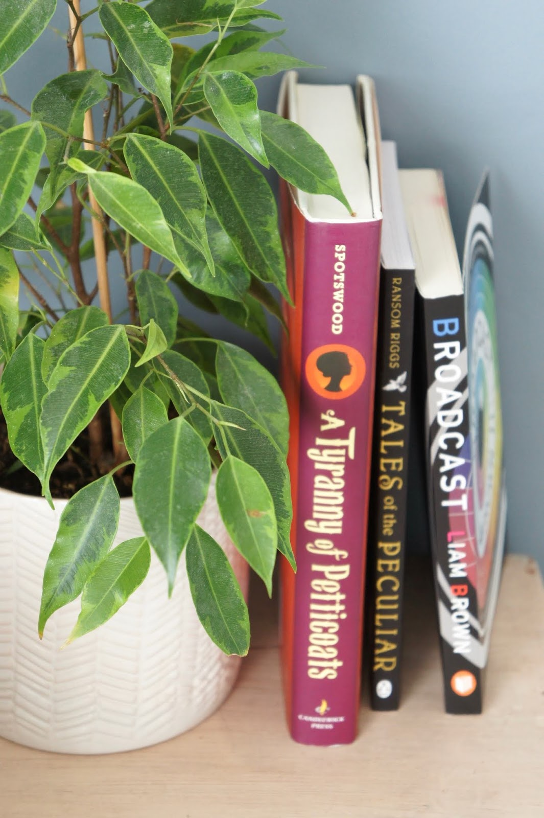 bookstack plant home decor