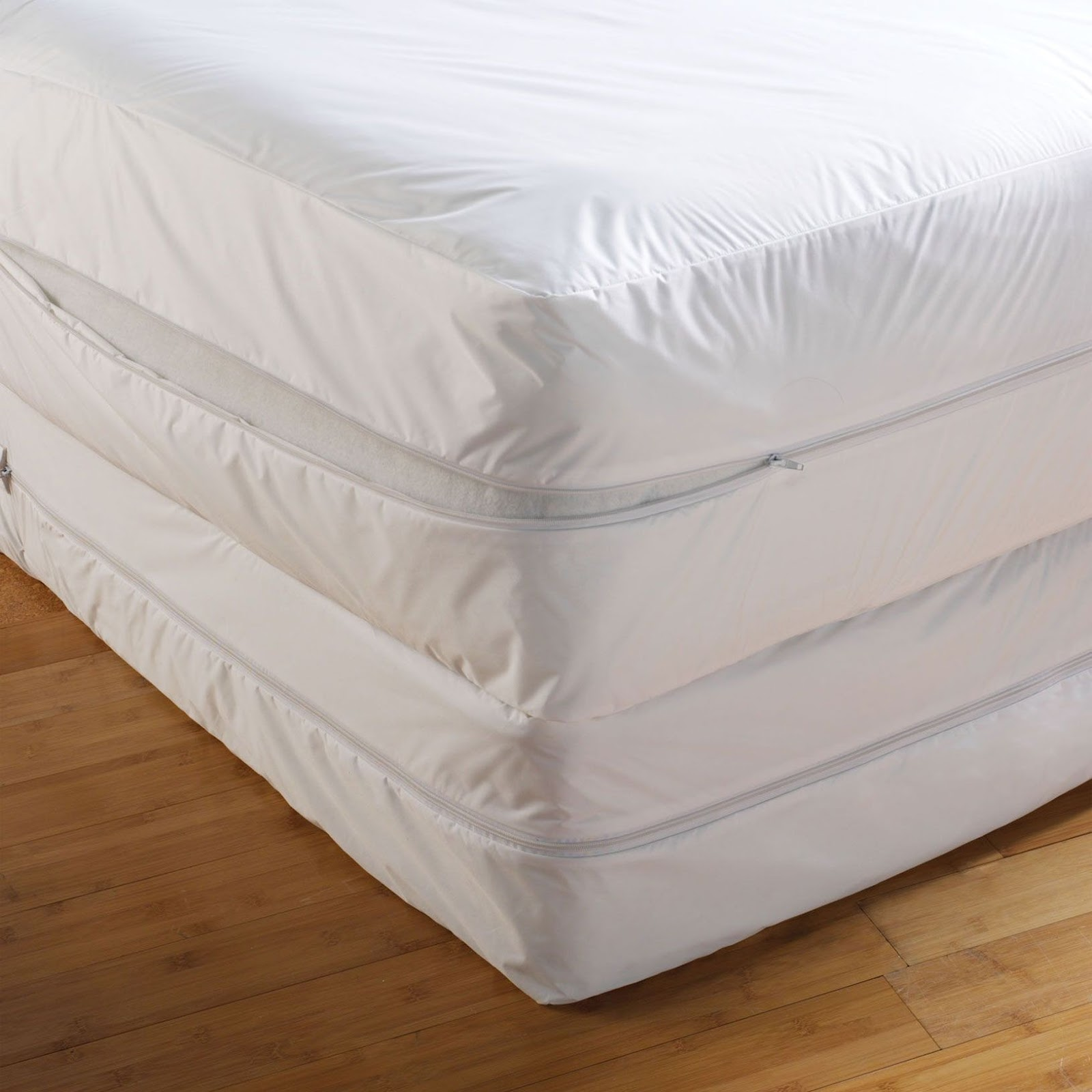Bed bug mattress cover is the best defense for preventing for How to cover a bed