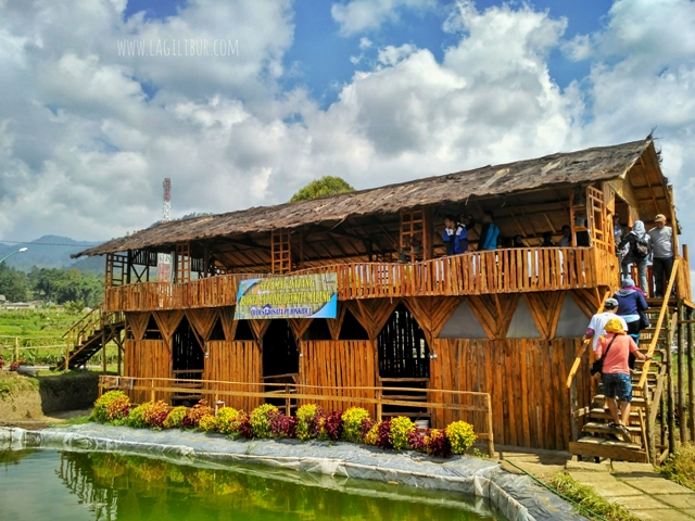 Kafe Sawah Pujon Kidul Malang