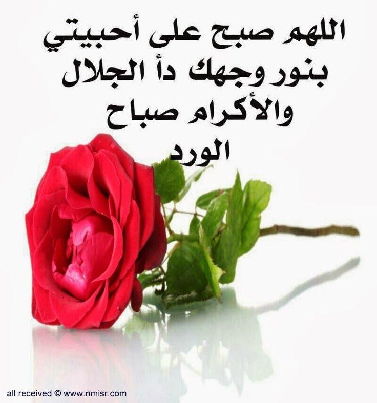 بالصور بوستات عن الصباح , اجمل الصور مع احلى صباح photos sabah al khair good morning 3