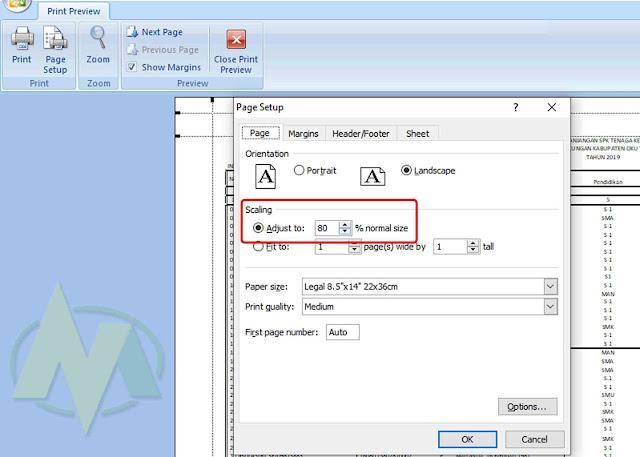 Begini Cara Print Di Ms. Excel agar Tidak Terpotong Rapi Dan Full Kertas.
