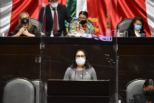 diputada Silvia Garza Galván (PAN)