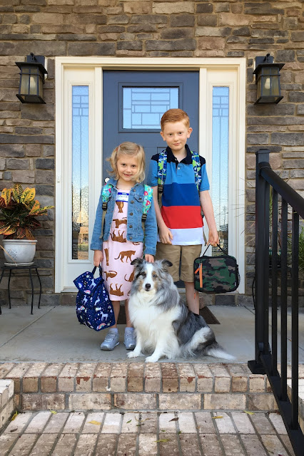 Porter and Stella are Back to School!