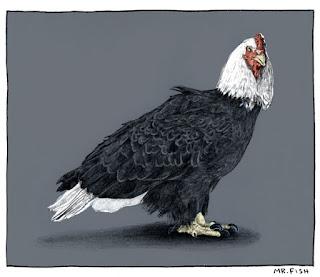 Korkak Bir Tavuk Muyuz Yoksa Kartal Mı?
