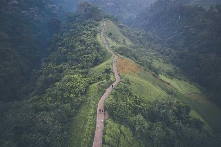 Bukit Campuhan Ubud, Bali - Daya Tarik, Fasilitas Wisata, dan Lokasi