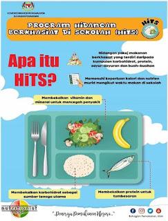 Cara Membuat Makanan Untuk Bekal Sekolah Anak