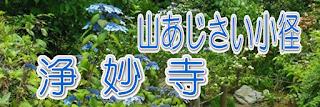 山あじさいの小径~浄妙寺~