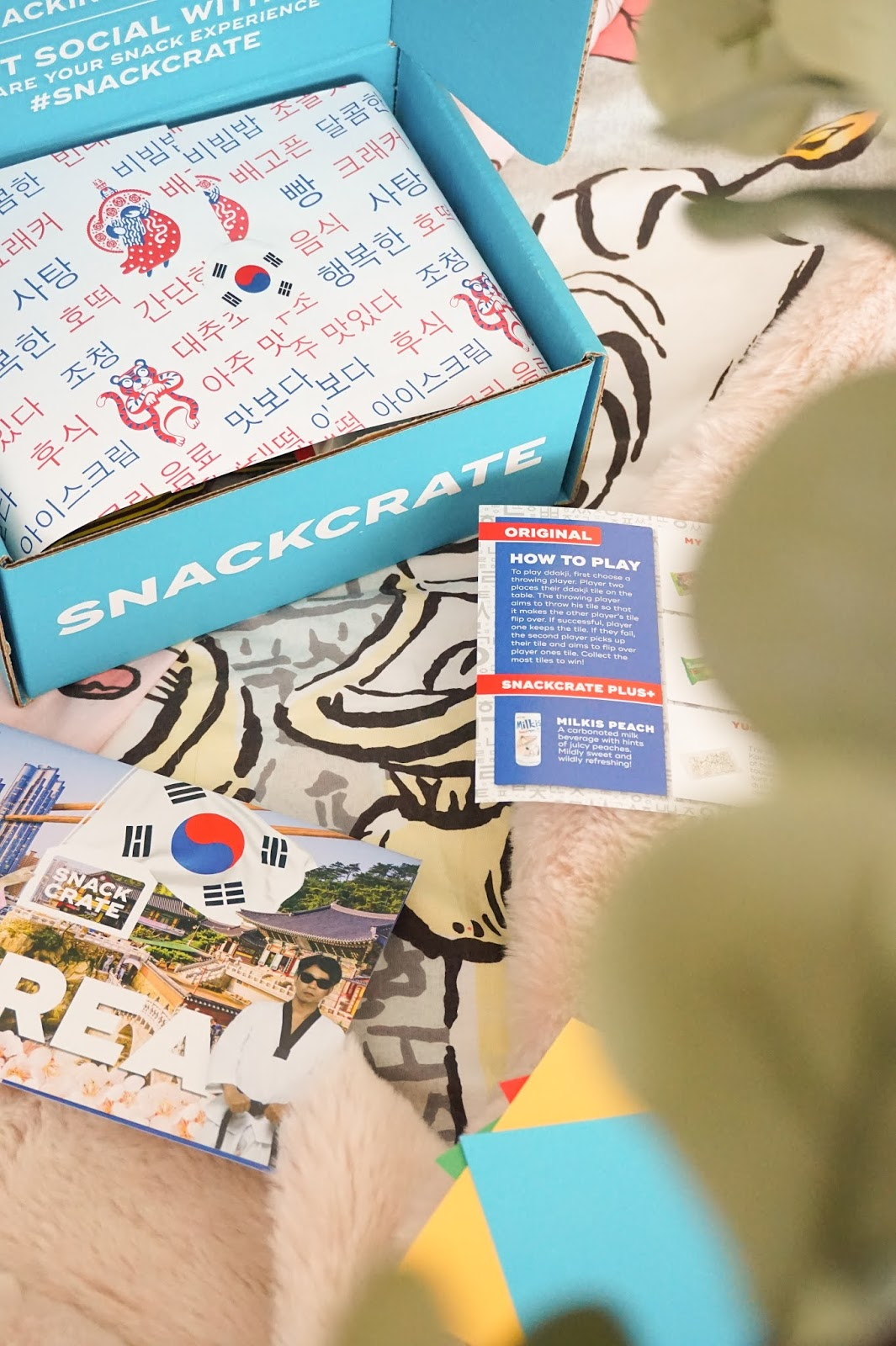 SnackCrate South Korea Box Of Snacks - Em's Editorial