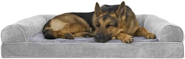Cama para Perros de Espuma
