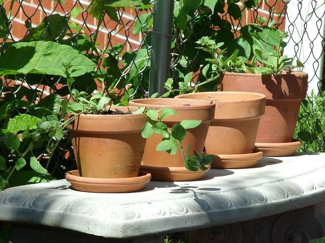 Safe Containers for Organic Gardening