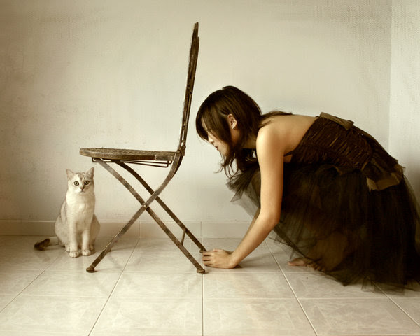 wallpapers de gatos y chicas