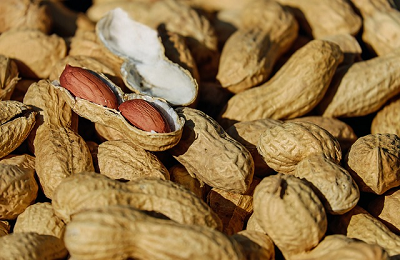 Gurihnya Rasa Kacang Bikin Jantung Sehat