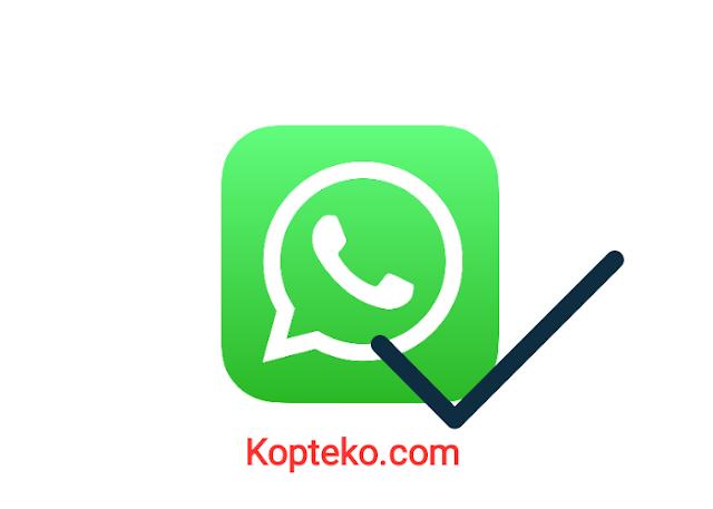 WhatsApp Centang 1 Tapi Online