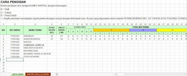 Tampilan kolom atau seet aplikasi Raport TK, http://www.librarypendidikan.com/