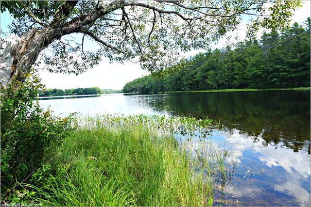 Río Kennebec a su Paso por Phippsburg en Maine