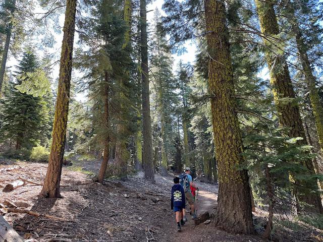 Ralston Peak trail
