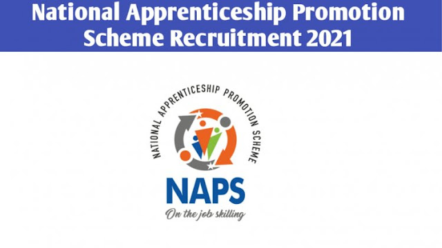 NAPS – TANGEDCO Recruitment 2021 - Apply here for Wireman Posts - 08 Vacancies