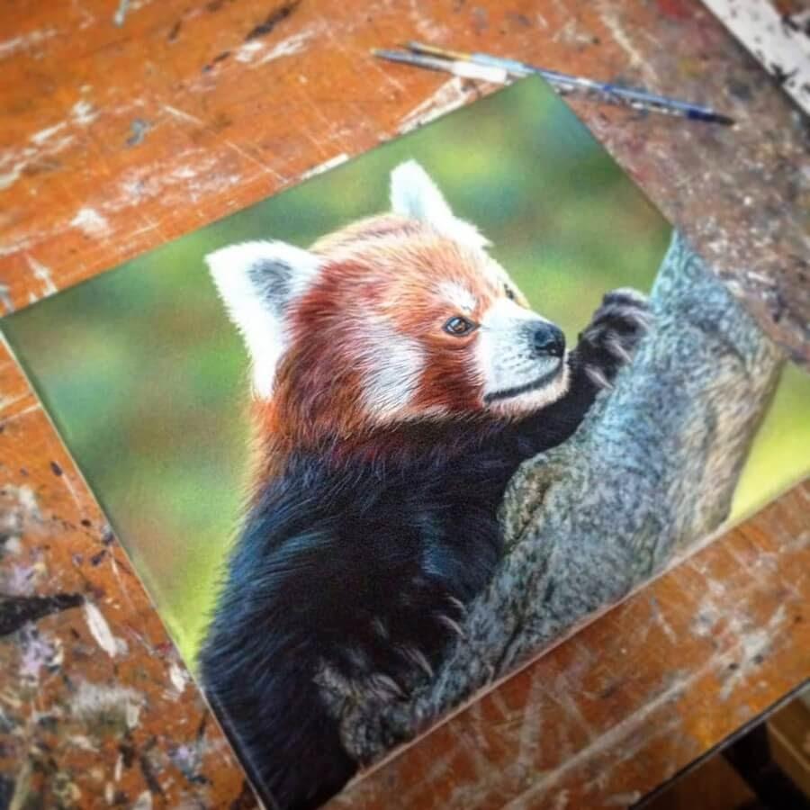 06-Red-Panda-Amber-Tyldesley-www-designstack-co