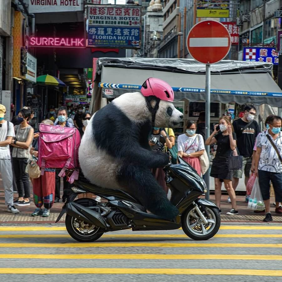 01-Panda-food-deliverers-Tommy-Fung-www-designstack-co