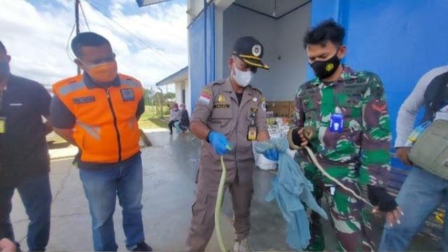 Karantina Pertanian Merauke Gagalkan Penyelundupan 4 Ekor Ular Endemik Papua.lelemuku.com.jpg