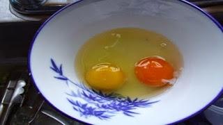 telur ayam arab berwarna kuning kemerahan