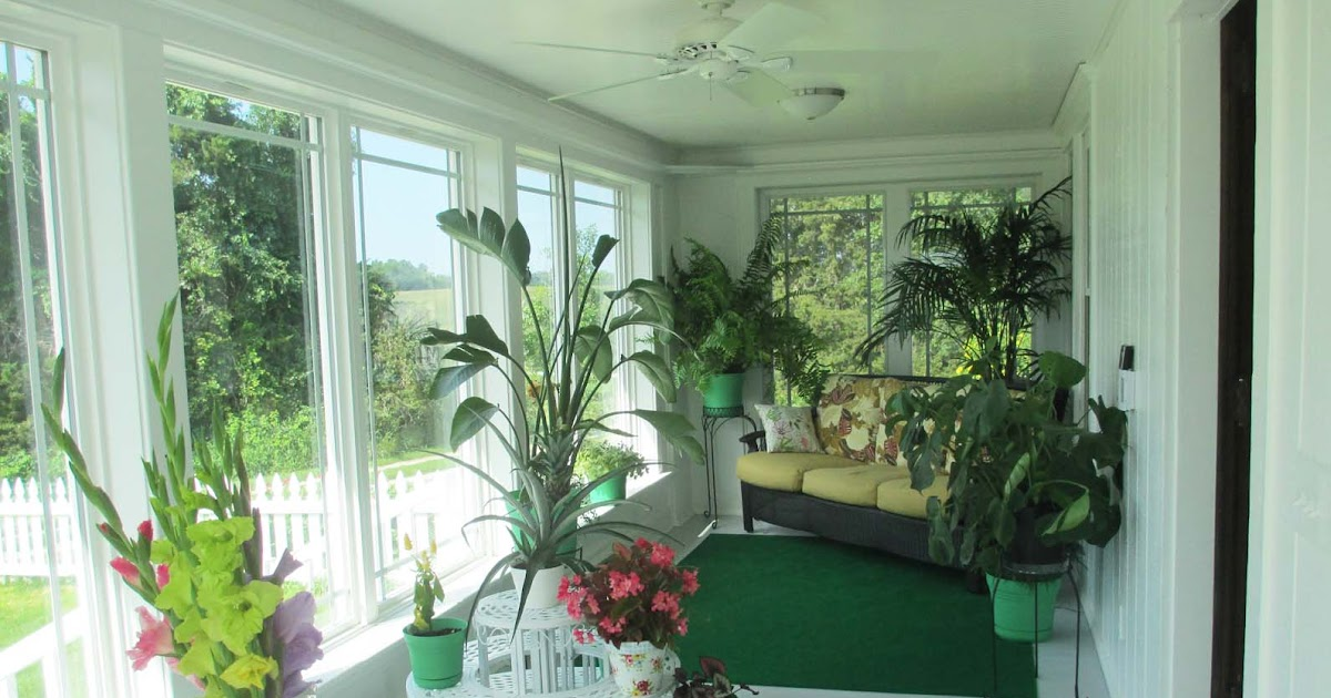 garden fancy sunroom final progress report plants and