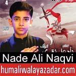 https://www.humaliwalyazadar.com/2018/09/nade-ali-naqvi-nohay-2019.html