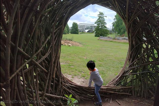 Living Willow Sculptures Meise Botanic Garden